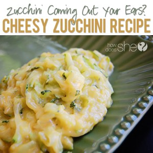 Zucchini-coming-out-your-ears-Cheesey-Zucchini-Recipe