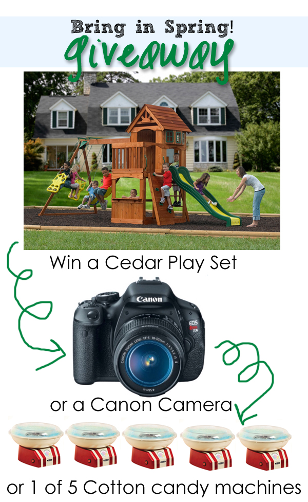 Bring in Spring GIVEAWAY! {Cedar Play Set, Camera & More}