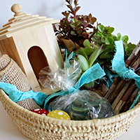 emily fairy garden kit featured image