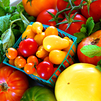 ashley tomato featured image