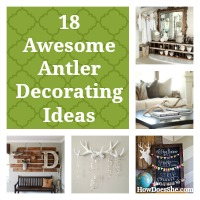 Antler featured