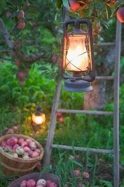 Garden lanterns 5