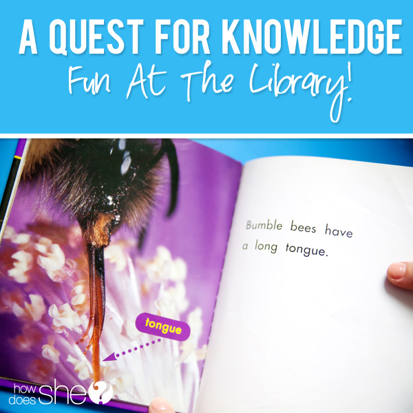 A Quest for Knowledge Fun At the Library