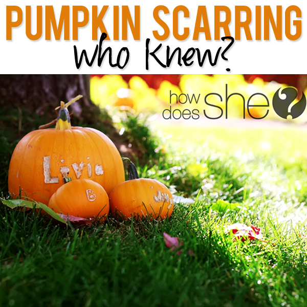 Pumpkin Scarring
