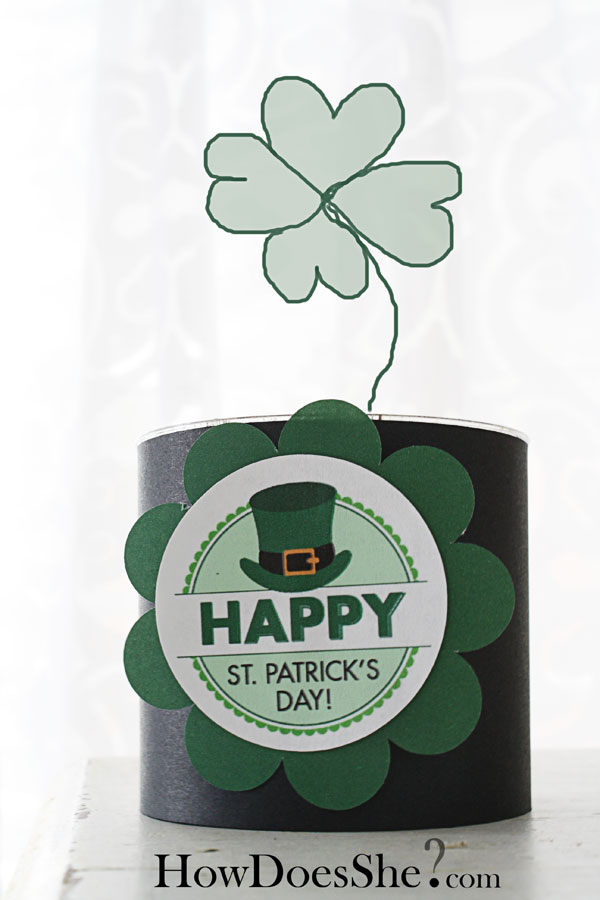 Grow Your OWN Clover for St Patricks Day