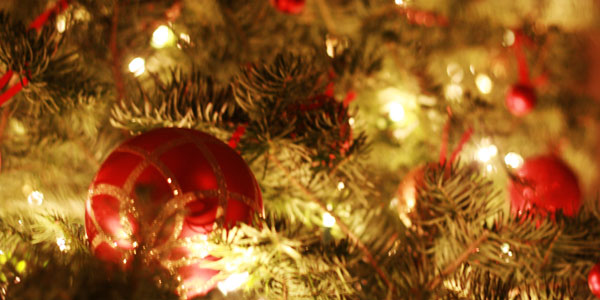 Fun Frugal Family Tradition #7 – Magical Moments Under The Christmas Tree