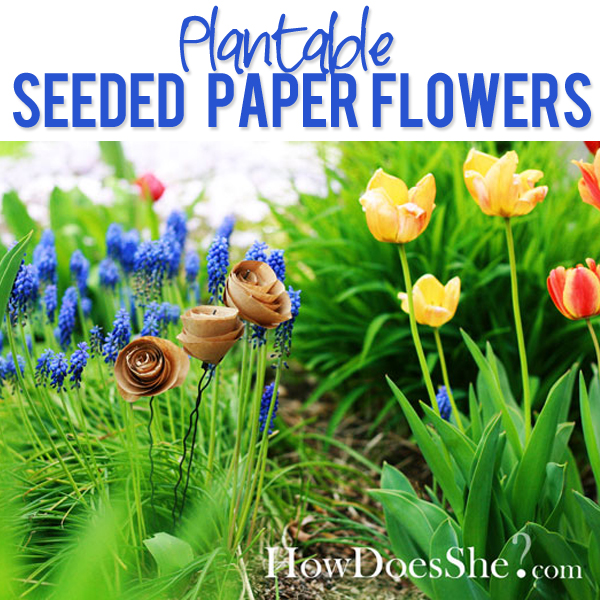 http://www.howdoesshe.com/wp-content/uploads/so-cool-Plantable-Seeded-Flowers.jpg